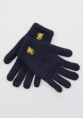 """Rękawiczki """"Snowstorm"""" Navy"""